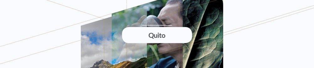 ecog_ecuador_button