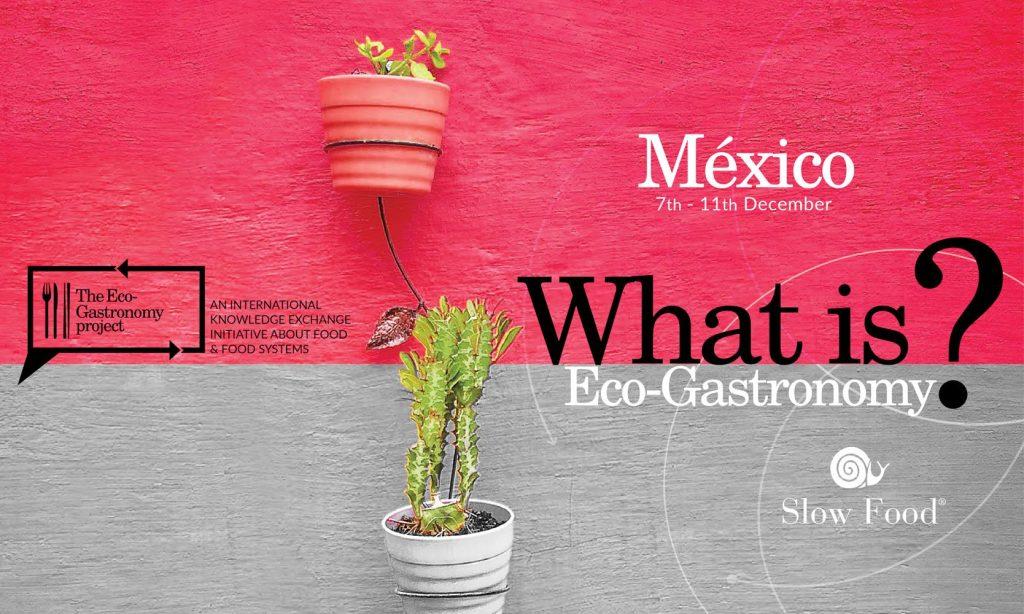 ecogastronomy mexico city banner