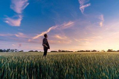 Food Industry Monitor: anche l'alimentare rallenta nel 2020, ma chi punta sulla salute avrà un recupero veloce