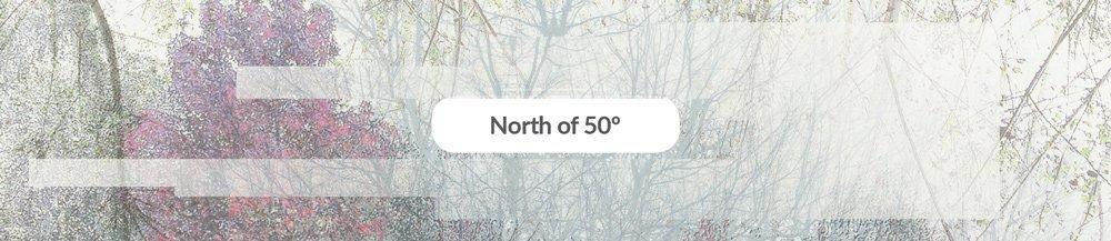 ecogastronomy_menu_northof50