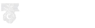 unisg-logo-alt